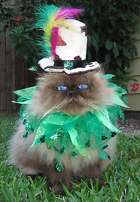 Mad hatter top hat and Shamrock Shuffle party collar for dogs and cats