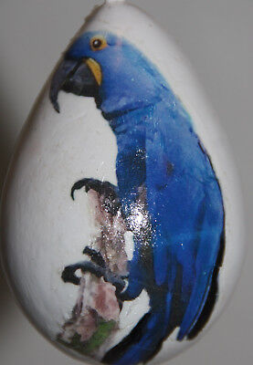 gourd Easter egg, yard art or Christmas ornament with parrot for sale  Shipping to Canada