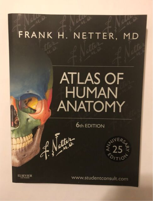 New Netters Atlas Of Human Anatomy 6th Ed Textbooks Gumtree