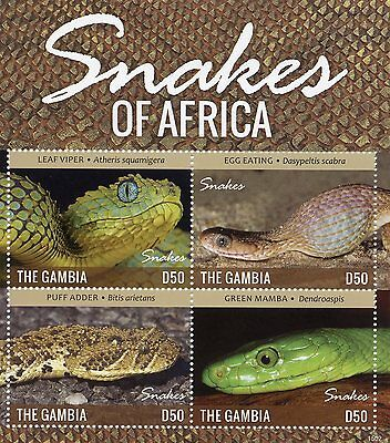 Gambia 2015 MNH Snakes of Africa 4v M/S Reptiles Leaf Viper Puff Adder Mamba