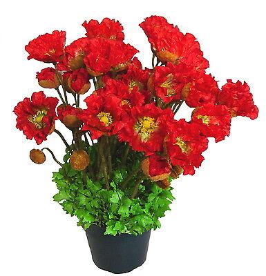 Mohn im Topf 50cm hoch, Kunstpflanze Kunstblumen (Mohn Pflanzen)