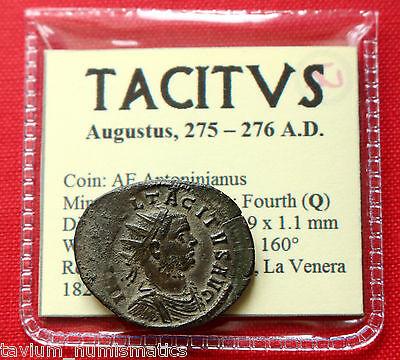 TACITUS ANTONINIANUS 3G PROVIDENTIA SISCIA ROMAN EMPIRE COIN