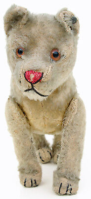 Original Steiff Lioness Young Lion #5316 with FF Button
