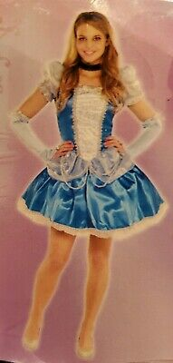 Disney Princess Cinderella Sexy Sassy Costume Adult Size - Sexy Disney Princess