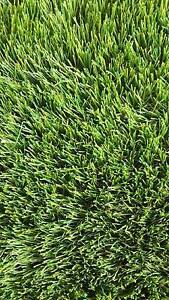 40mm Artificial Grass starting at $14 per sqm *while stock last* Thomastown Whittlesea Area Preview