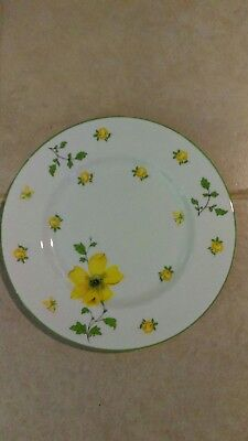 Royal Victoria Fine Bone English China Salad Plate (Glasses No Longer Available)