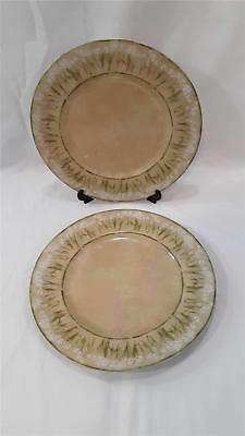 Lot/2 Narcissus 222 Fifth Narcissus Dinner Plates 10.75