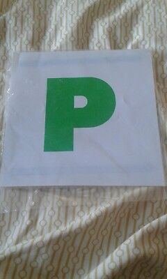 magnetic p plates