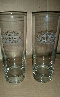 sambuca antica longshot pub/bar/man cave NEW glasses x 2