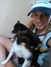 Haley's Pet Care Oatley Hurstville Area Preview