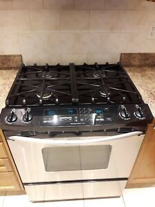Dual fuel Kitchen Aid stove