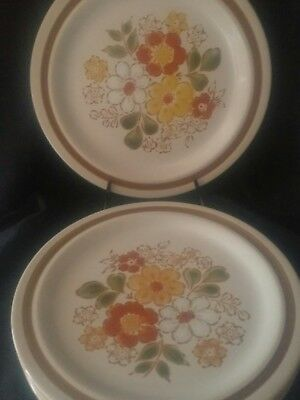 Decorated Pebble Stone For Sigma   Japan Dinnerware Plates  Floral Design 5