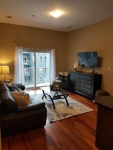 4 bed 2 bath - Units for 8-month leases!