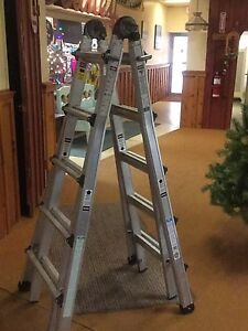Single or extension ladder