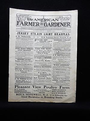 March 1903 Journal American Farmer And Gardener Chickens  Poultry News   Ads