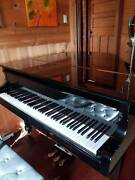 Grand Piano Coolup Murray Area Preview