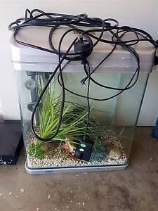Fish tank and pump Mango Hill Pine Rivers Area Preview