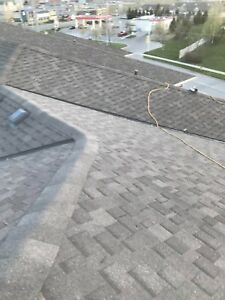 Replace and Repair Your Roof