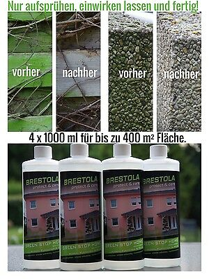 Grünbelagentferner Hochkonzentrat Setpreis 4 x 1L für bis zu 400 m² hochwirksam