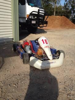2 junior go karts for sale - $1400 each or $2500 for both
