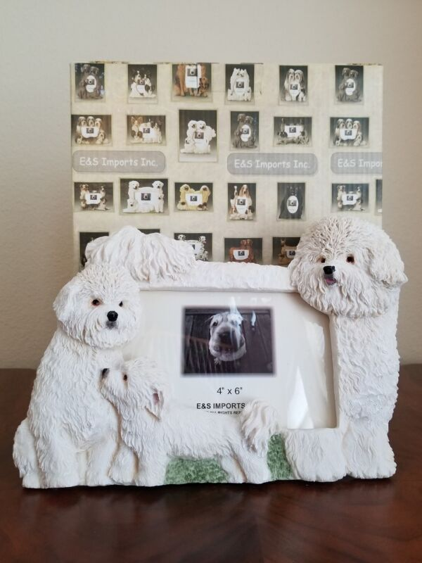 "Bichon Frise picture Frame for 4"" x 6"" Photo"
