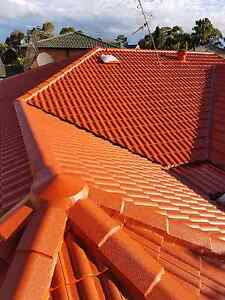 Roof painting Services Auburn Auburn Area Preview