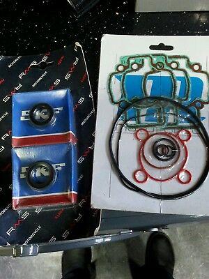 Main  bearings and seals kit  and top end gasket set gilera nrg  dna skp 50 cc