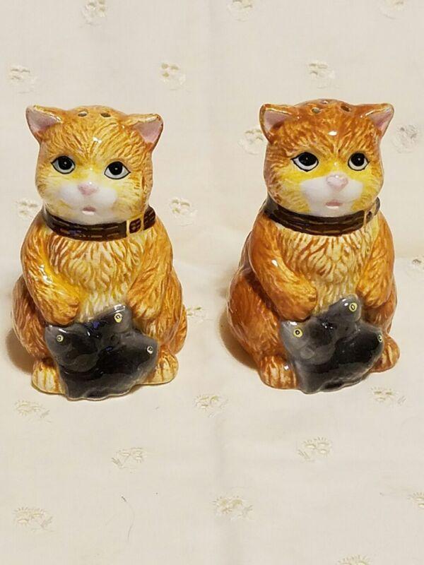 Cat Kitten & Fish Salt and Pepper Shakers