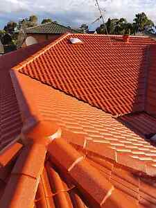 Roof painting Services Mardi Wyong Area Preview