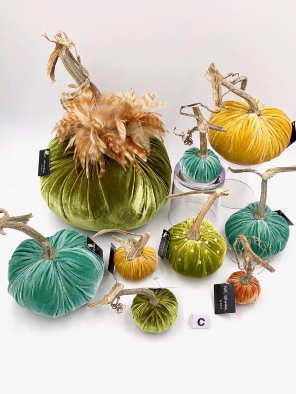 Designer Velvet Pumpkin Set w Real Stems - Hot Skwash - Halloween Thanksgiving C