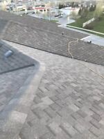 Roofing Replacement, Professional Team