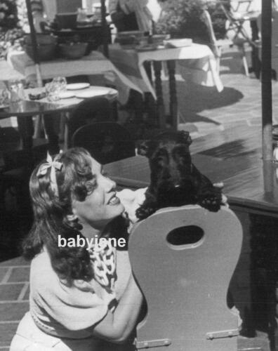 002 LUPE VELEZ CANDID AT PARTY POSING W/ BLACK SCOTTIE DOG PHOTO
