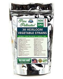 30 Heirloom Non-GMO Vegetable Fruit Seeds Emergency Survival Garden Organic Food