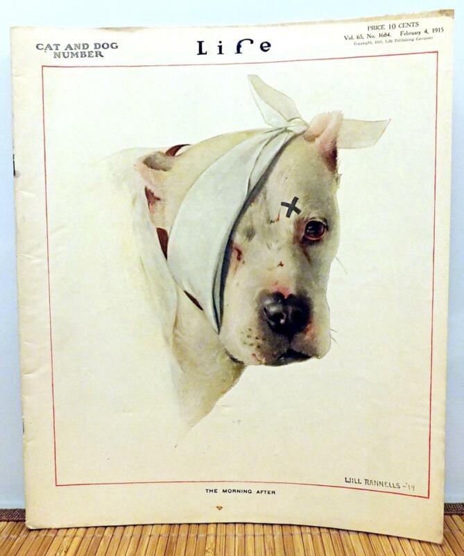 LIFE MAGAZINE 1915 PIT BULL DOG COVER ART By Rannells PITBULL TERRIER Vtg 105yrs