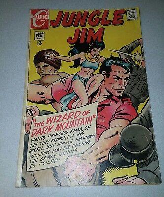 JUNGLE JIM 22 STEVE DITKO WALLY WOOD TOM PALMER CHARLTON SILVER AGE 1969 comics