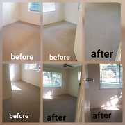 Bond/Carpet Cleaning and Pest control Caloundra Caloundra Area Preview
