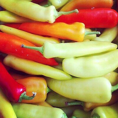 25 SWEET BANANA PEPPER 2020 (all non-gmo heirloom vegetable seeds!) (Heirloom Banana Pepper Seeds)