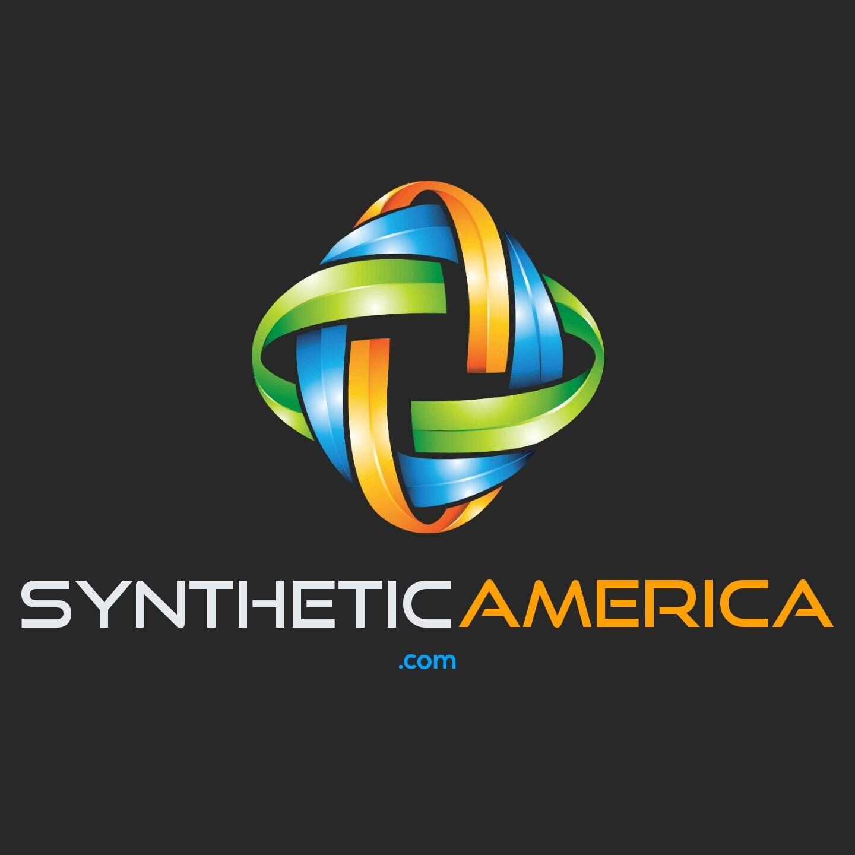 SyntheticAmerica.com - Domain Name 2,194 GoDaddy Value - $21.99