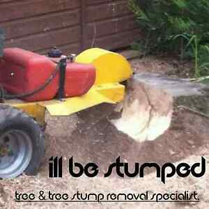 ILL BE STUMPED (STUMP GRINDING) Ashtonfield Maitland Area Preview