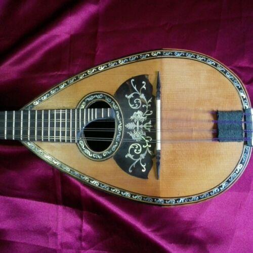 mandolino  napoletano Vinaccia style