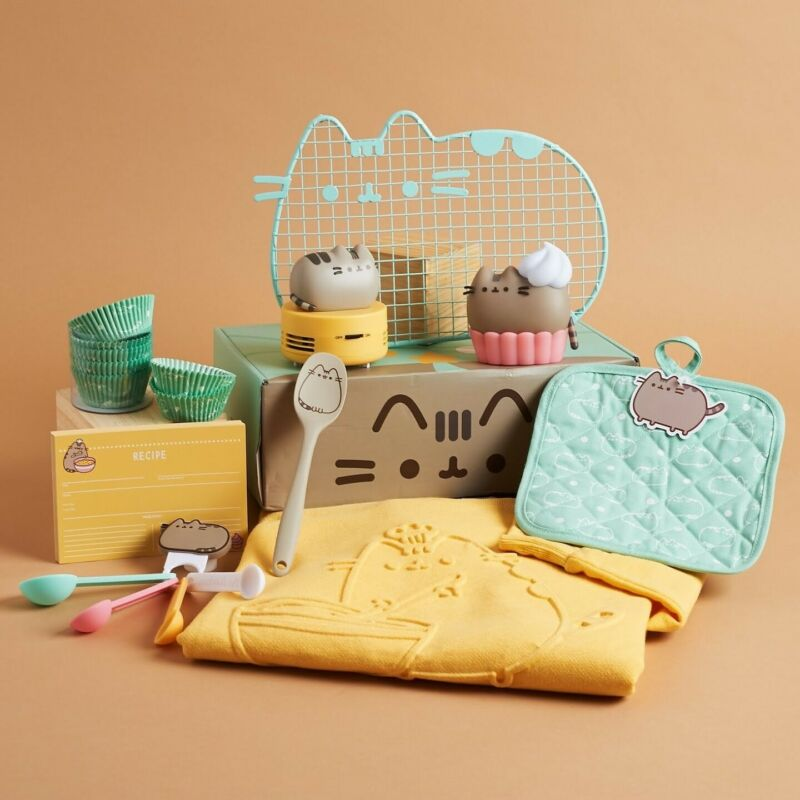 Winter 2019 Brand New Sealed Pusheen Subscription Box S Small Baking