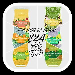 Scent your Moments with Scentsy
