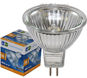 10x MR16 50w Long Life Halogen Light Bulbs 12v LOOK £6