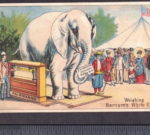 Barnum Circus Tent 1800s Elephant Fairbanks Scale Albany NY Victorian Trade Card
