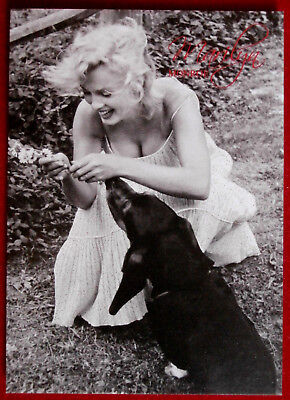 MARILYN MONROE - Shaw Family Archive - Breygent 2007 - Individual Card #20