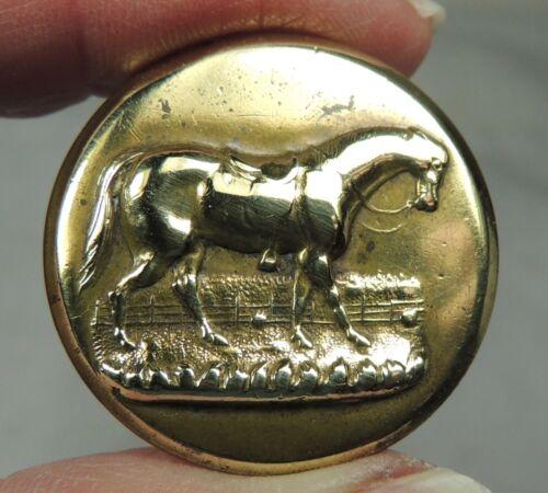 ANTIQUE BRASS SPORTING BUTTON ~  HORSE