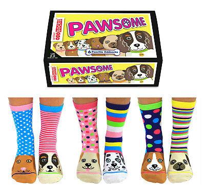 PAWSOME ODD SOCKS LADIES DOG UK 4 - 8 UNITED ODDSOCKS GIFT BOX GIFT IDEA