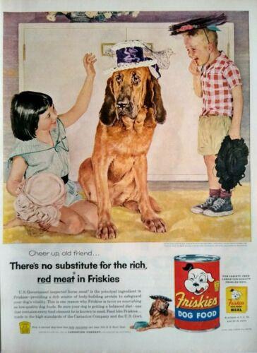 1951 Blood Hound Dog Art Douglass Crockwell Friskies Dog Food Vintage Print Ad