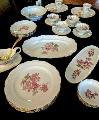 RARE SCHUMANN ARZBERG BRIAR ROSE  Dinnerware set 31 pieces Germany