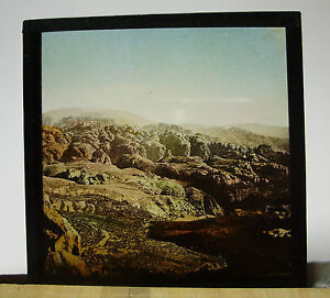 c1900-Unknown-POSSIBLY-AUSTRALIA-OUTBACK-LANDSCAPE-Glass-Lantern-Photo-Slide